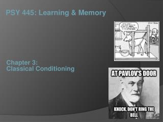 Chapter 3:  Classical Conditioning