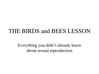 THE BIRDS and BEES LESSON