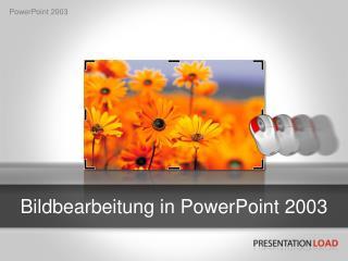 Bildbearbeitung in PowerPoint 2003