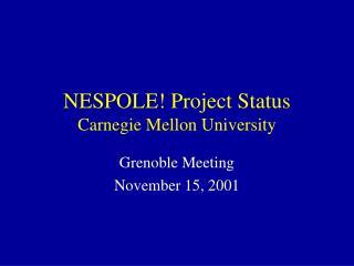 NESPOLE! Project Status Carnegie Mellon University