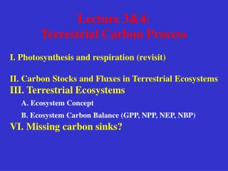 Lecture 3&4:  Terrestrial Carbon Process I. Photosynthesis and respiration (revisit)
