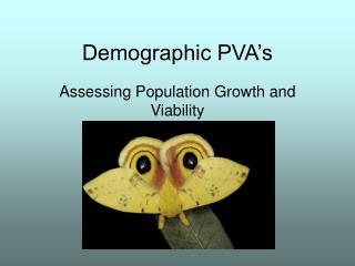 Demographic PVA's