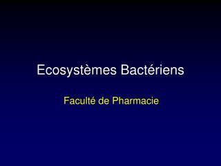 Ecosystèmes Bactériens