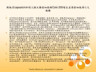 辣椒素 capsaicin 抑制人類大腸癌細胞株 Colo 205 增生並誘發細胞凋亡之機轉