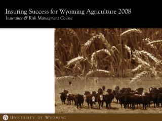 RMA Crop Production and Revenue Insurance Products