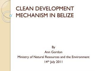 CLEAN DEVELOPMENT MECHANISM IN BELIZE