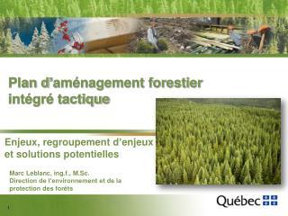 Plan d'aménagement forestier intégré tactique