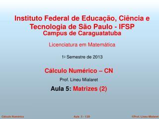 Cálculo Numérico – CN  Prof. Lineu Mialaret  Aula 5:  Matrizes (2)