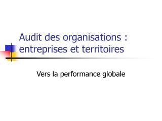 Audit des organisations : entreprises et territoires