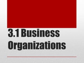 3.1 Business Organizations