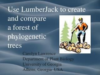 Use LumberJack to create and compare  a forest of  phylogenetic  trees