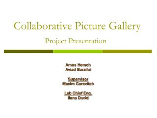 Collaborative Picture Gallery Project Presentation