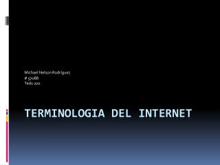 Terminologia  del Internet