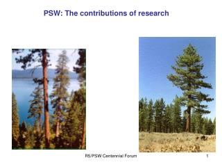 PSW: The contributions of research