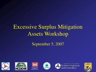 Excessive Surplus Mitigation Assets Workshop