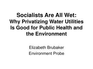 Elizabeth Brubaker  Environment Probe