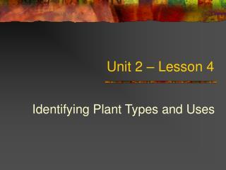 Unit 2 – Lesson 4