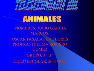 NOMBRES: JULIO GARCIA MARCOS. OSCAR PASALAGUA FLORES PROFRA: THELMA ROMERO GOMEZ