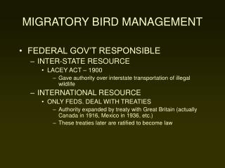 MIGRATORY BIRD MANAGEMENT