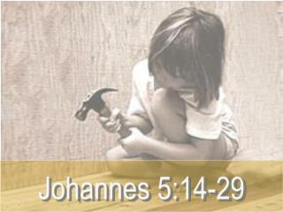 Johannes 5:14-29