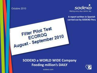 A report written in Spanish carried out by SODEXO Peru
