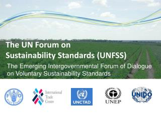 The Emerging Intergovernmental Forum of Dialogue on Voluntary Sustainability Standards