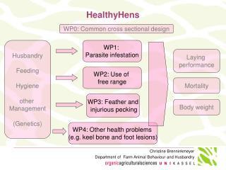 HealthyHens
