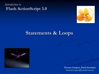 Statements & Loops
