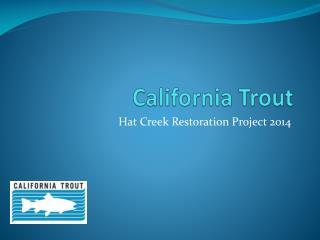 California Trout