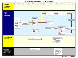 PATIENT WORKSHEET 1.1: UTI - Simple