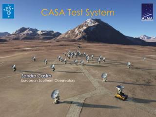 CASA Test System