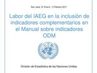 Labor del IAEG en la inclusión de indicadores complementarios en el Manual sobre indicadores ODM