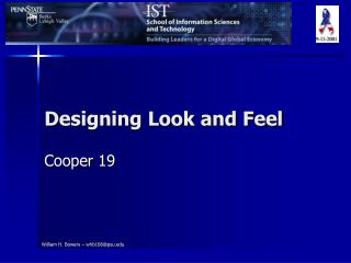 Designing Look and Feel