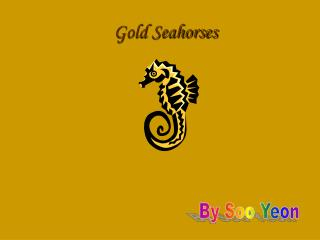 Gold Seahorses