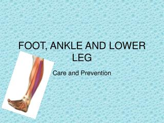 FOOT, ANKLE AND LOWER LEG