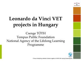 LLP programme  Leonardo da Vinci sub-programme