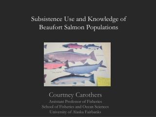 Subsistence Use and Knowledge of  Beaufort Salmon Populations
