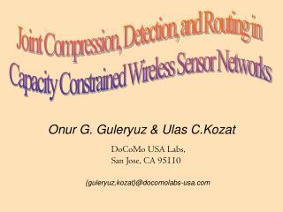Onur G. Guleryuz & Ulas C.Kozat