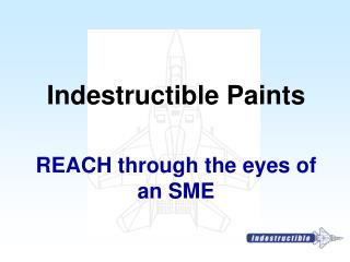 REACH through the eyes of an SME