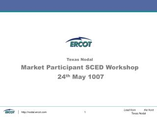 Texas Nodal Market Participant SCED Workshop  24 th  May 1007