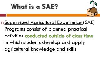 What is a SAE?