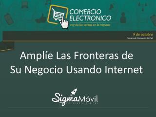 Amplíe Las Fronteras de  Su Negocio Usando Internet