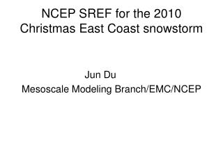 NCEP SREF for the 2010 Christmas East Coast snowstorm