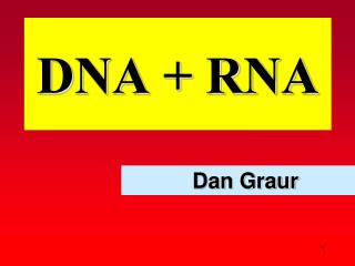 DNA + RNA