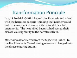 Transformation Principle