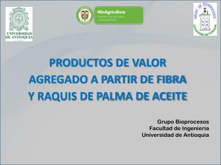PRODUCTOS DE VALOR AGREGADO A PARTIR DE FIBRA Y RAQUIS DE PALMA DE ACEITE
