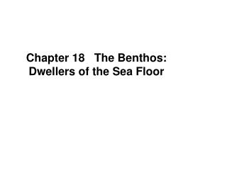 Chapter 18   The Benthos: Dwellers of the Sea Floor