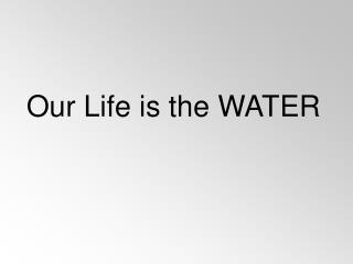 Our Life is the WATER
