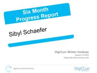 DigCCurr Winter Institute January 7-8, 2013  Chapel Hill, North Carolina, USA