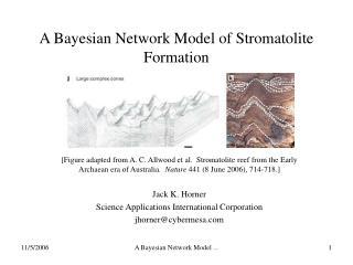 A Bayesian Network Model of Stromatolite Formation